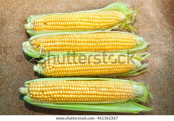 corn harvest on the table