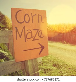 Corn maze sign next to a field of corn with Instagram style filter