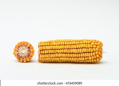 Corn on white background. An ear of corn isolated on a white background.  Yellow color of Dried corn background.Dried corn bundle for animal. Dried corn seed on white background. Grains of ripe corn.