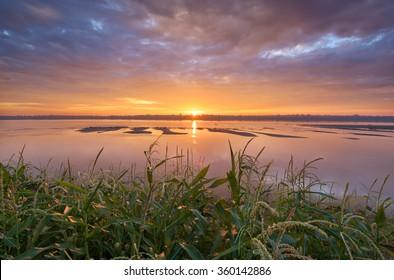 Corn riverside on mekong river in sunrise