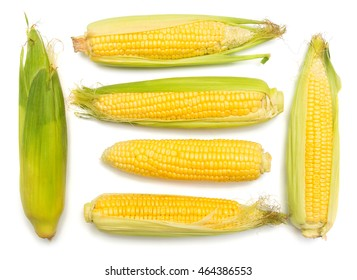 Corn with skin or without skin isolated on white background. A collection of corn. Top view, flat