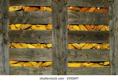corn stored in a wood cage