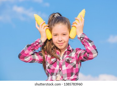 Corn vegetarian and healthy organic product. Vegetarian nutrition concept. Kid girl hold yellow corn cob on sky background. Girl cheerful hold ripe corns. Harvesting and fun. Kids love corn food.