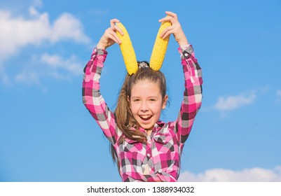 Corn vegetarian and healthy organic product. Harvesting and fun. Kids love corn food. Vegetarian nutrition concept. Kid girl hold yellow corn cob on sky background. Girl cheerful hold ripe corns.