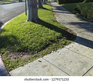 Sidewalk Images, Stock Photos & Vectors | Shutterstock