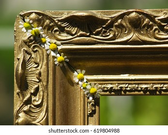 A corner of a vintage frame with chamomile on it