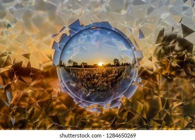 Cornfield in a cristal ball