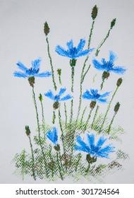 Cornflower. Original pastel painting on paper