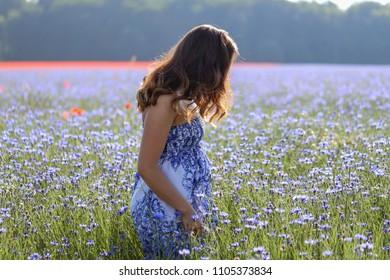 Cornflowers / Girl on cornflower blue