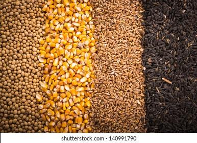 Corns, sunflower, wheat, soy beans