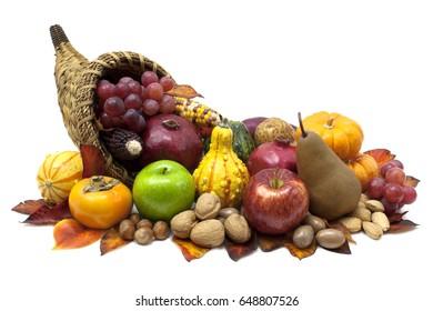 Cornucopia fall harvest isolated