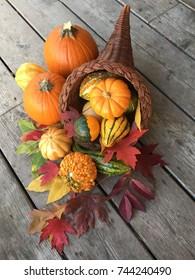 Cornucopia full of fall vegetables