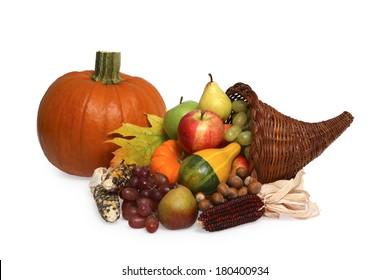 Cornucopia and pumpkin on white background