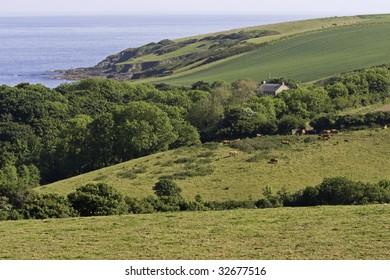 Cornwall coastal countryside