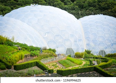 Cornwall, England - July 16, 2018: View of the biomes of the Eden Project, a popular visitor attraction in Cornwall, England and home of the largest indoor rainforest in the world