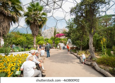 CORNWALL, ENGLAND - JULY 24: Eden Project visitors  observing  plants displays or seated resting inside giant domes Mediterranean Biome featuring plants from that region July 24, 2013 Cornwall England