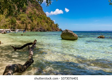 Coron Palawan Philippines April 13, 2018 Tourists sitting on an overhanging tree at Sunset beach
