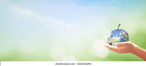 Corporate social responsibility (CSR) concept: Human hands holding apple fruit of earth globe on green grass and blue sky background. Elements of this image furnished by NASA