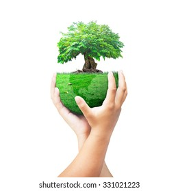 Corporate social responsibility (CSR) concept: Two human hands holding big tree with a green earth globe of grass isolated on white background