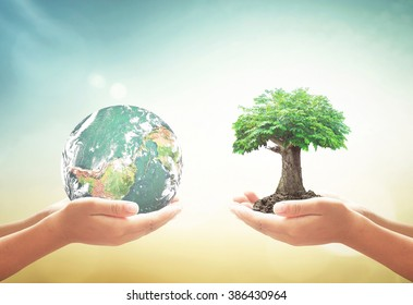 Corporate social responsibility (CSR) concept: Two children hands holding earth globe and green tree over blurred nature background. Elements of this image furnished by NASA