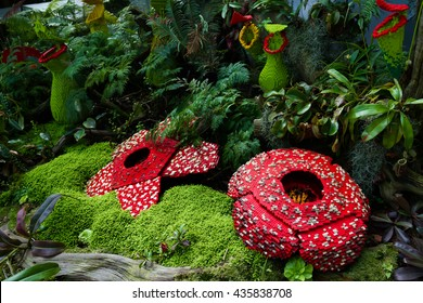 Corpse flower was made of interlocking plastic bricks toy (Selective focus at the front flower). Scientific name is Rafflesia Arnoldii, Rafflesia kerrii. World's Largest Flower.