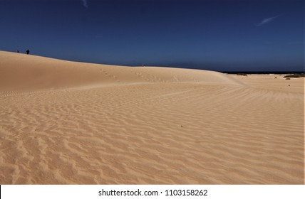 Corralejo dunes natural park, dunes on the island of Fuerteventura, canary islands