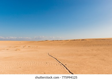 Corralejo sand dunes with single tyre track on the sand. Blue cloudy sky in the horizon