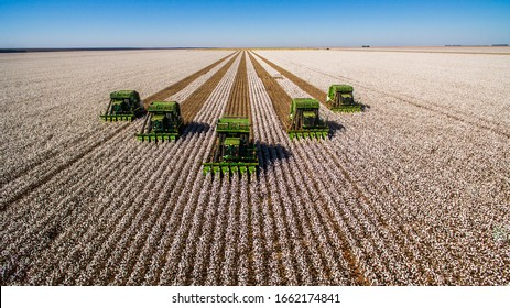 Correntina, Bahia, Brazil, February 26, 2019: Agriculture - Aerial frontal image of several arrow machines that harvest cotton in the field, with blue sky - Agribusiness