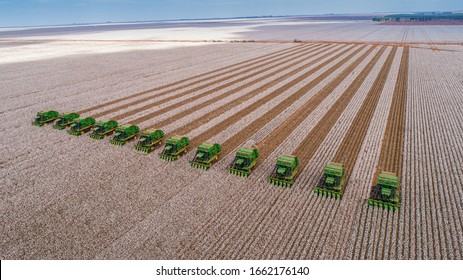 Correntina, Bahia, Brazil, February 26, 2019: Agriculture - Aerial image of several machines that harvest cotton straight in the field, with blue sky - Agribusiness