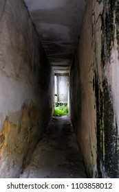 corridor in an abandoned house