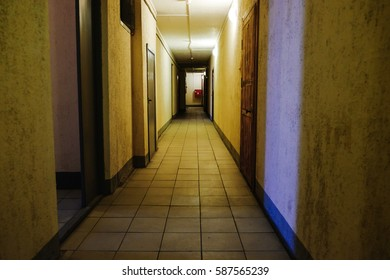 the corridor in the building