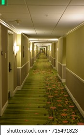 Corridor inside a building with green carpet creating an interesting visual pattern