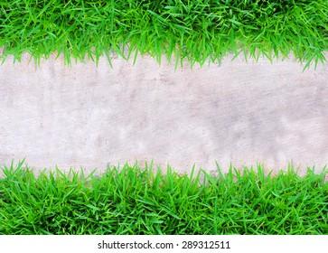 Corridor with natural green grass