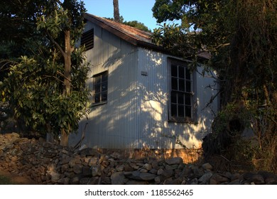 Corrugated iron house in leafy garden