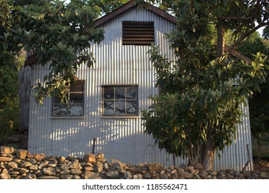 Corrugated iron house with windows in leafy garden