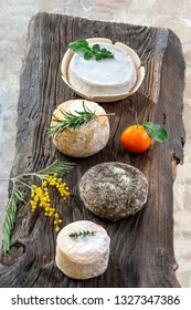 Corsican traditional varity of goat and sheep cheese on wood background
