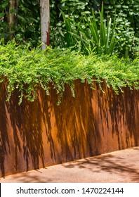 Corten Steel Planter Shrub Rust