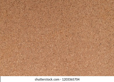 Cortical texture of wood. natural color and texture. Cork.