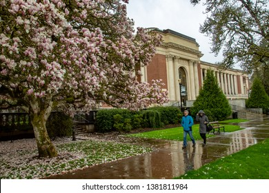 Corvallis, Oregon - 4/6/2019:  People walking in the rain in front of the Memorial Union (student union) on the Oregon State University Campus.  Tulip trees are in blossom, people blurred show movem