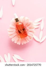 Sérum de beauté cosmétique bouteille d'acide à l'huile sur fond rose avec marguerite rose Soins naturels de la peau