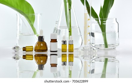 Cosmetic bottle containers with green herbal leaves and scientific glassware, Blank label package for branding mock-up, Research and develop natural organic beauty skincare product concept.