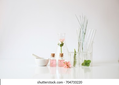 cosmetic laboratory experiment and research with leaf, oil and ingredient  extract for natural beauty  and organic skincare product package,bio science concept. alternative medicine. spa