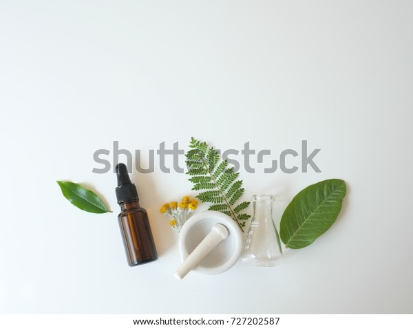 cosmetic laboratory experiment and research with leaf,oil and ingredient for natural beauty and organic skincare product the blank bottle for label ,bio science concept. alternative medicine. spa.