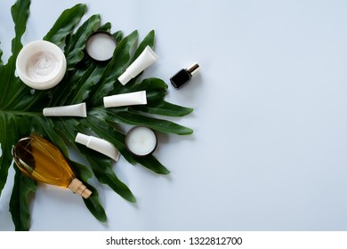 Cosmetic skin care bottle containers with green leaves on white background, mock-up, Natural organic beauty product concept.