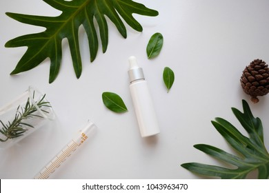 cosmetic skincare nature background flat lay. herbal medicine with herb and green leaves .beauty spa product,top view.