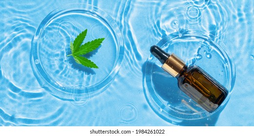 Cosmetic spa medical skin care,  serum bottle , micellar toner or emulsion and hemp leaf on blue water texture background with splashes.  Flat lay. Top view. Hard light