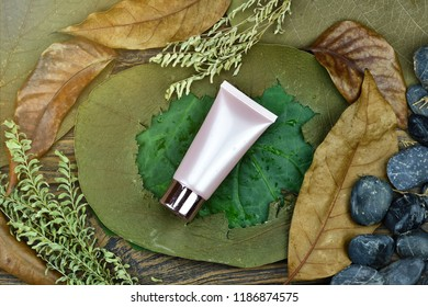 Cosmetics bottle package container on natural background, Skin care on green leaf, Moisturizing and dry damage care concept.