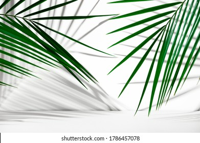 Cosmetics product advertising backdrop. Exhibition white podium on a white background with palm leaves and shadows. Empty pedestal to display product packaging. Showcase mockup.