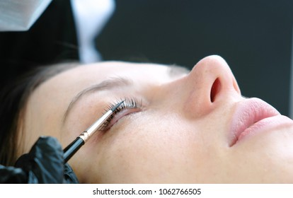 Cosmetologist rubs the client's eyelash with brush. lash lamination. Closeup eyes.