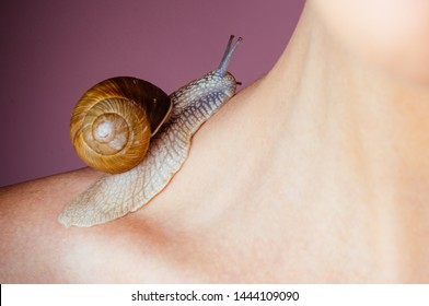 Cosmetology beauty procedure. Girl and cute snail. Skin care. Massage with snail. Skincare repairing. Healing mucus. Having fun with adorable snail. Spa and wellness. Cosmetics and snail mucus.